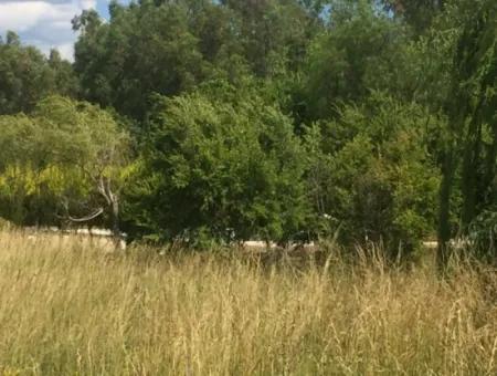 Muğla Gökova Körfezinde 26000M2Arsa Üzerine Kurulu Muhteşem Satılık Çiftlik